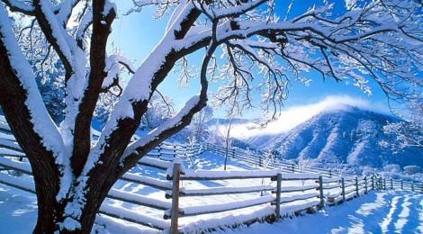 Zima zima bela …